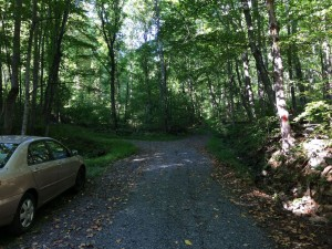 Shenandoah: Pine Hill Gap – Broad Hollow Loop